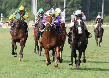 Colonial Downs Thoroughbred Horse Racing